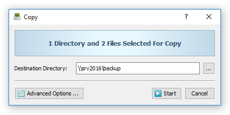 DiskSavvy File Copy Operations