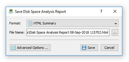 DiskSavvy Save Disk Space Analysis Report