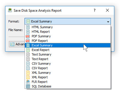 DiskSavvy Save Disk Space Analysis Excel Report