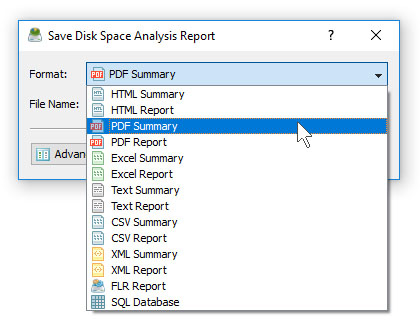 DiskSavvy Save Disk Space Analysis PDF Report
